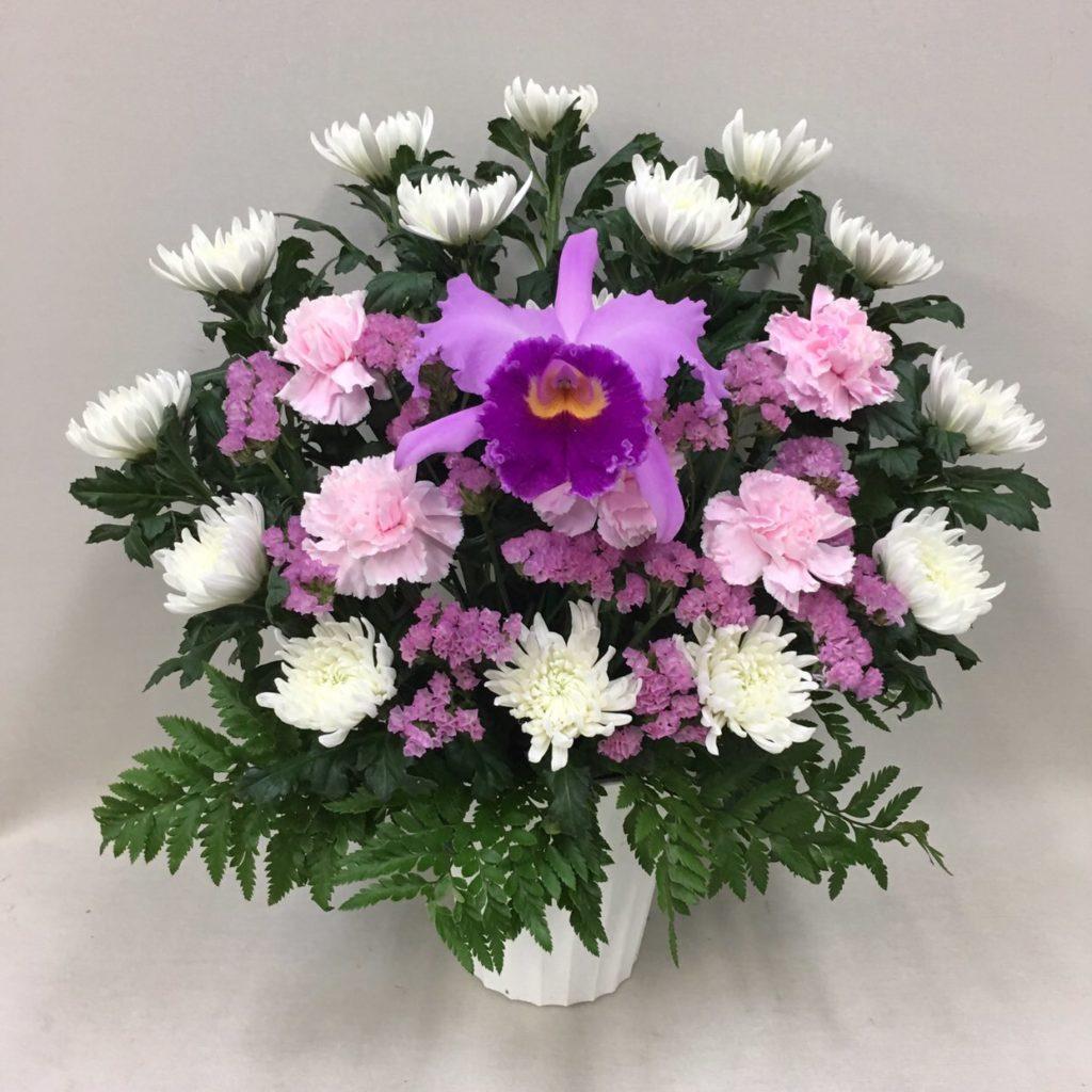 【御供】カトレアと菊のアレンジメントP_50_SP-OS