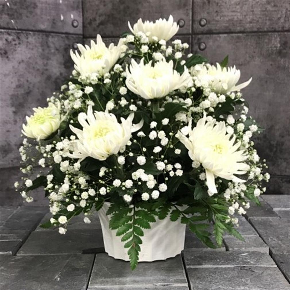 【御供】菊のアレンジメントW_26_SP-OS