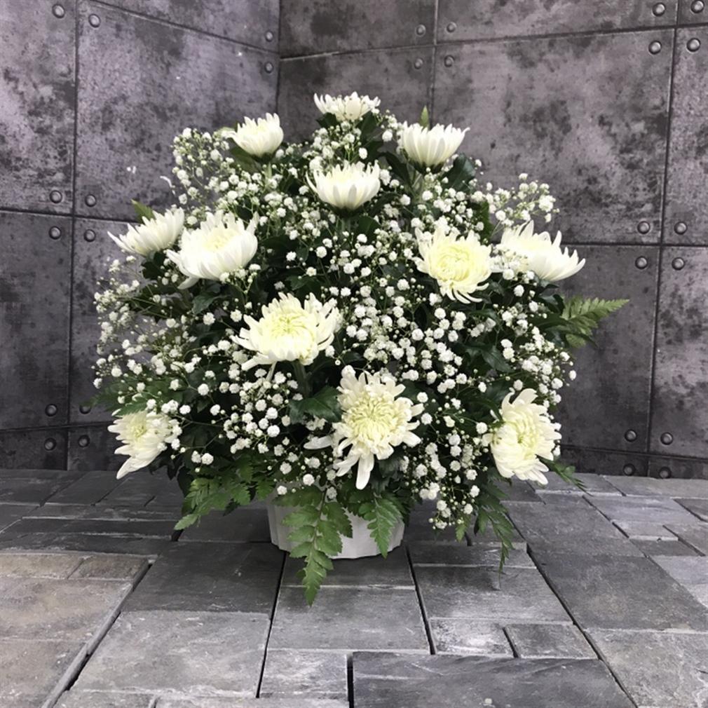 【御供】菊のアレンジメントW_40_SP-OS