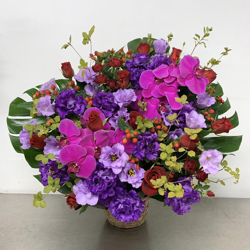 紫とピンクの胡蝶蘭入りアレンジメント (H75)