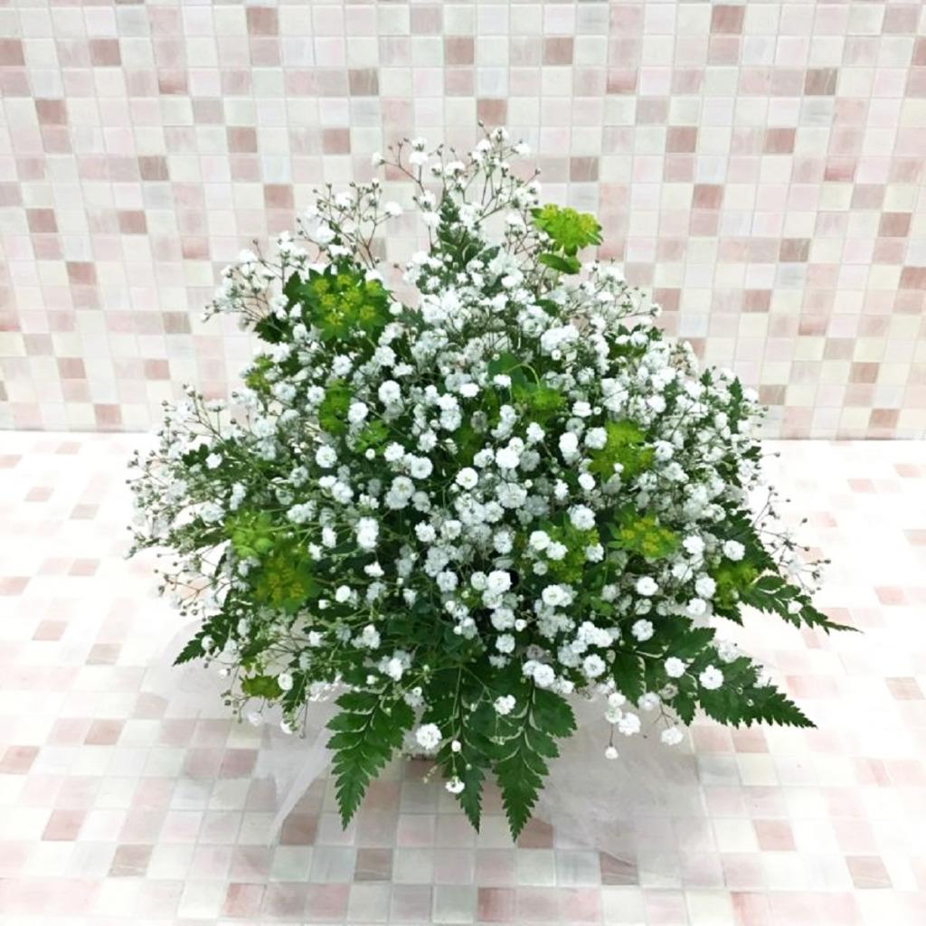 ホワイト×グリーン カスミ草 アレンジメント(H25)