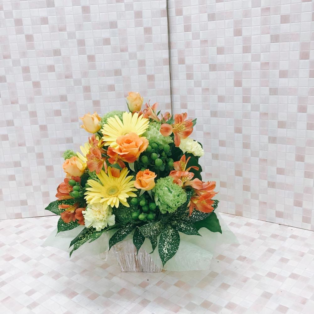 開店祝い用アレンジメント18035-0001