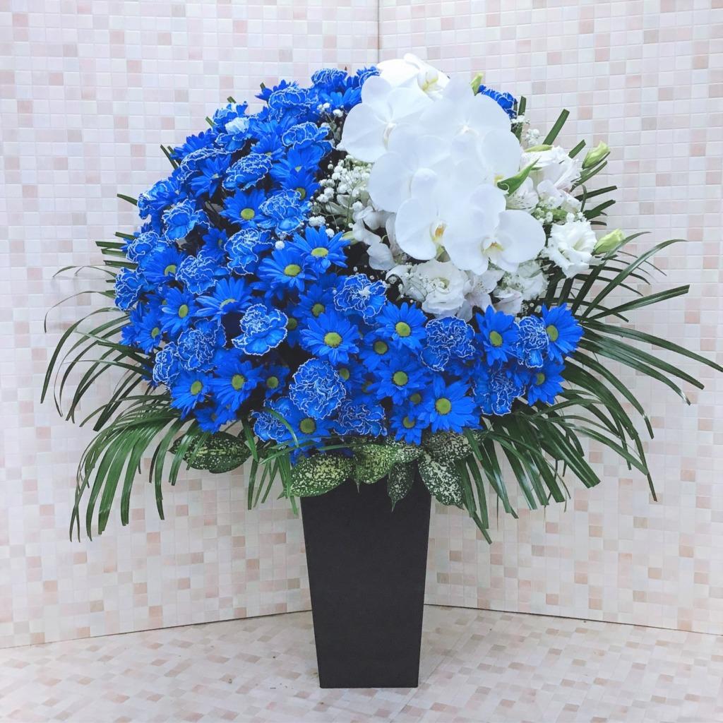 青い床置きムーンアレンジメント胡蝶蘭入り(H90)
