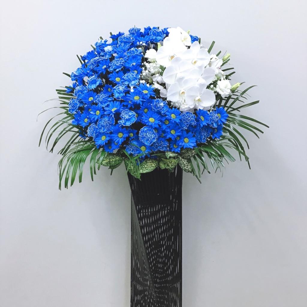 青と白のムーンアイアンスタンド花胡蝶蘭入り(H170)
