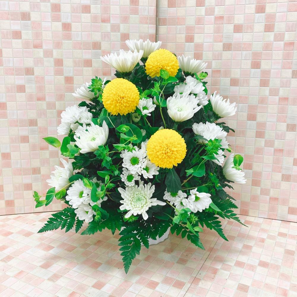 【供花】菊アレンジメントWY(H40)